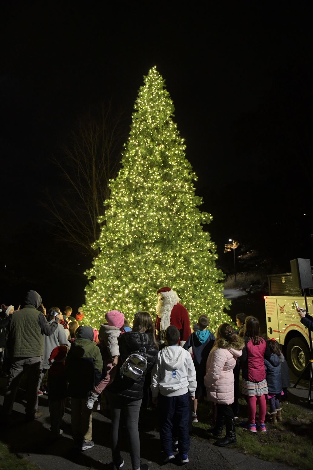 Fellsmere Pond Christmas Tree Lighting